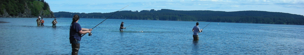 Wild Salmon Fishing header image 2