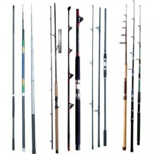 salmon fishing rods